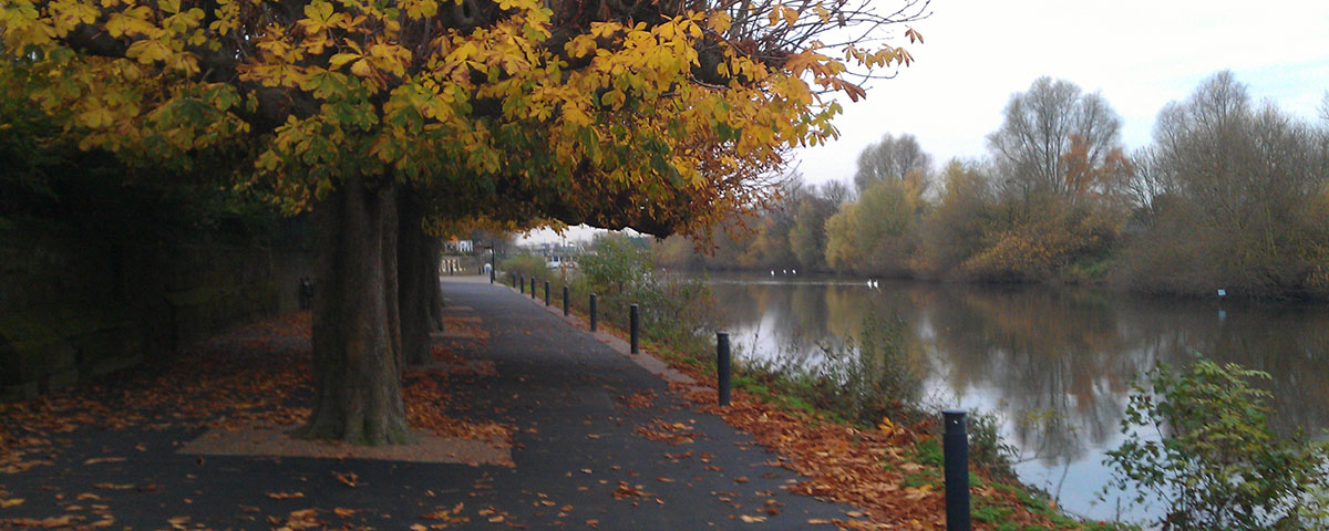 Autumn Leaves Along River Severn in Worcester